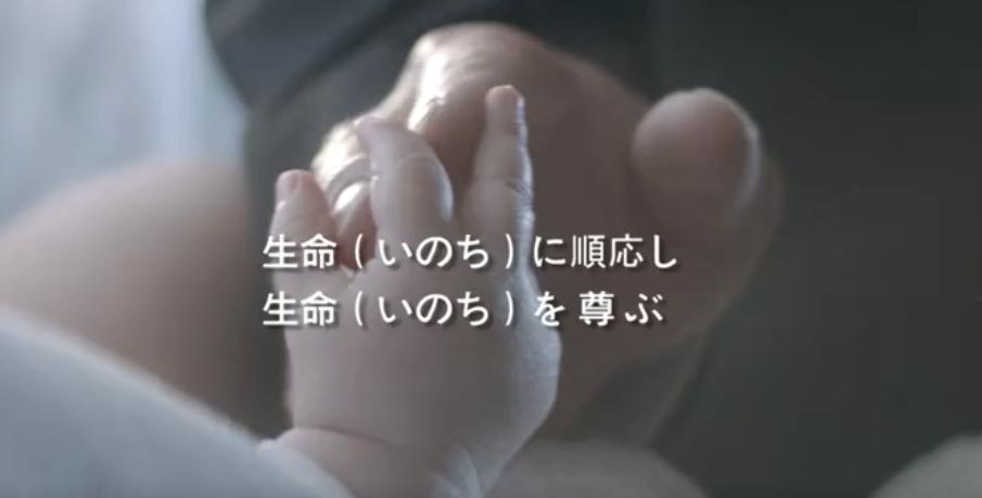pt老虎机形象片(日本語)